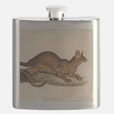 1835 Fossa Crytoprocta by Edward Lear Flask