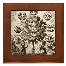 Alchemical tree, Philosophia reformata Framed Tile