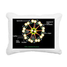 Cilium and flagellum str Rectangular Canvas Pillow