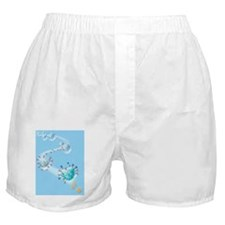 Allergic response, artwork Boxer Shorts