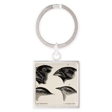 Darwin's Galapagos Finches Square Keychain