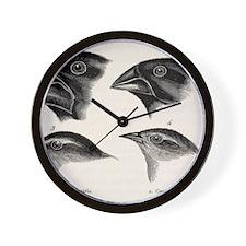 Darwin's Galapagos Finches Wall Clock