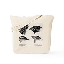 Darwin's Galapagos Finches Tote Bag