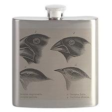 Darwin's Galapagos Finches Flask