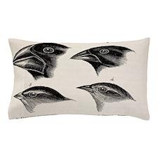 Darwin's Galapagos Finches Pillow Case