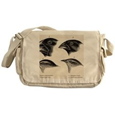 Darwin's Galapagos Finches Messenger Bag