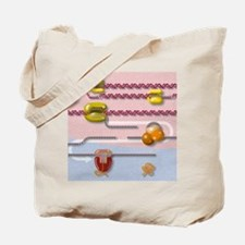 Genetic molecular mechanisms, artwork Tote Bag