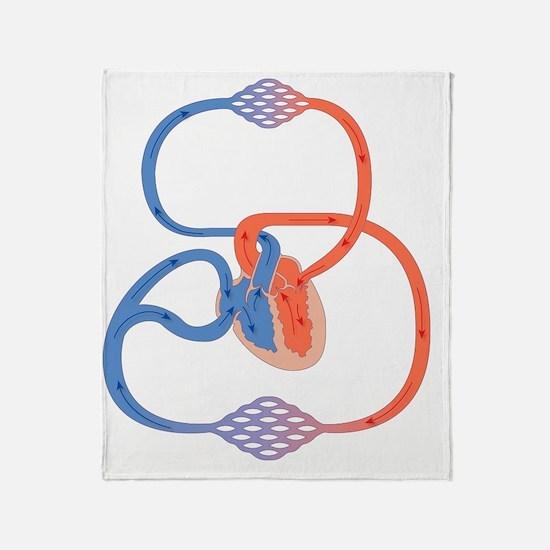 Cardiovascular system, artwork Throw Blanket