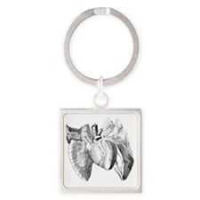 Heart and lung anatomy, 17th centu Square Keychain
