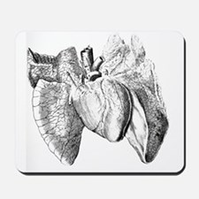 Heart and lung anatomy, 17th century Mousepad