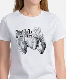 Heart and lung anatomy, 17th centu Women's T-Shirt