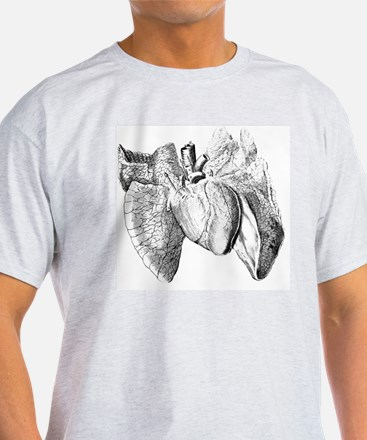 Heart and lung anatomy, 17th century T-Shirt