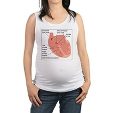 Heart conduction system, artwor Maternity Tank Top