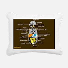 Human internal organs, d Rectangular Canvas Pillow