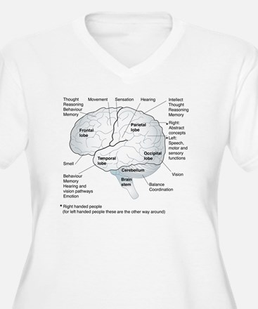 Functional areas  T-Shirt