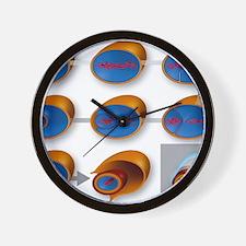 Bacterial endospore formation, diagram Wall Clock