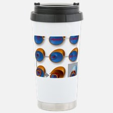 Bacterial endospore for Stainless Steel Travel Mug
