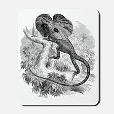 Frill-necked lizard, 19th century Mousepad