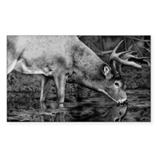 Deer Drawing 2013 Decal