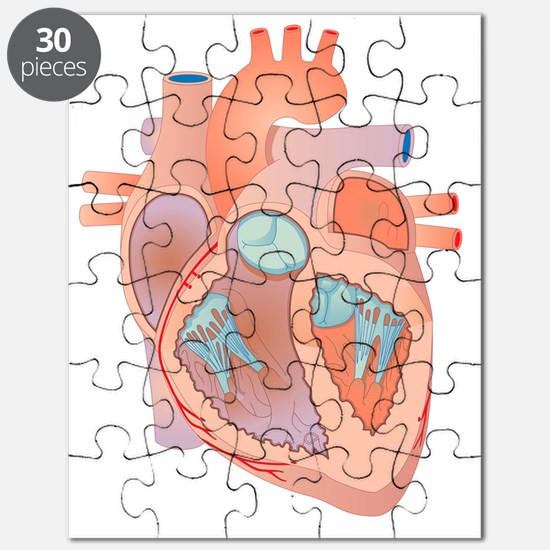 Heart, artwork Puzzle