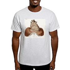 Heart anatomy, 19th Century illustra T-Shirt