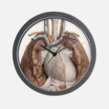Heart and lungs, historical illustratio Wall Clock