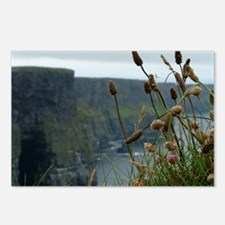 Irish Landscape Postcards (Package of 8)