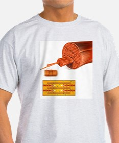 Muscle structure, artwork T-Shirt