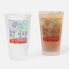 Human immune response, artwork Drinking Glass