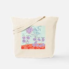 Human immune response, artwork Tote Bag