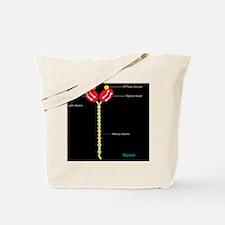 Myosin structure, artwork Tote Bag