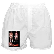 c0083304 Boxer Shorts