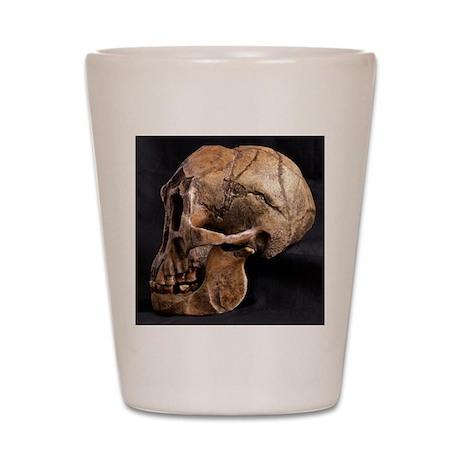 Homo floresiensis skull Shot Glass