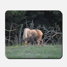 Mother Moose and Calf Mousepad