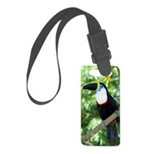 White-throated toucan Luggage Tag