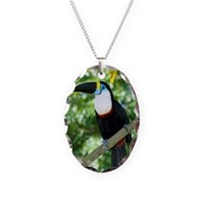 White-throated toucan Necklace Oval Charm