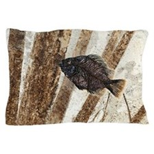 Priscacara fossil fish Pillow Case