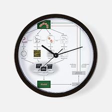 Systems biology, flow chart Wall Clock