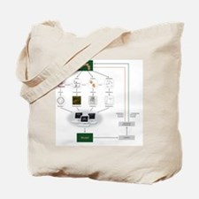Systems biology, flow chart Tote Bag