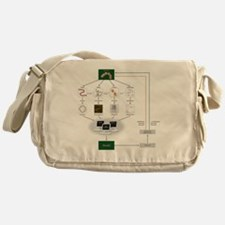 Systems biology, flow chart Messenger Bag