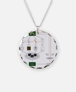 Systems biology, flow chart Necklace