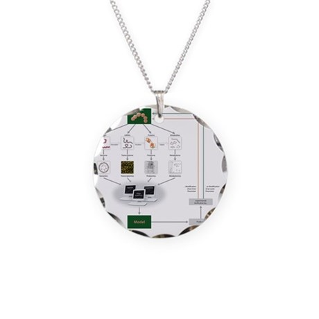 Systems biology, flow chart Necklace Circle Charm
