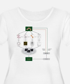 Systems biolo T-Shirt
