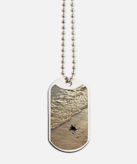 Green turtle hatchling Dog Tags