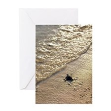 Green turtle hatchling Greeting Card