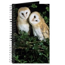 Barn owls Journal