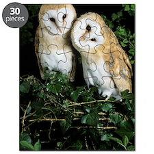 Barn owls Puzzle