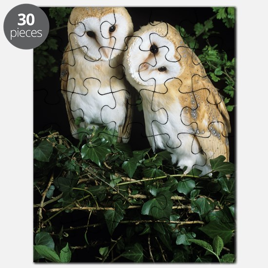 Barn owls Puzzle