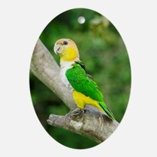 White-bellied parrot Oval Ornament