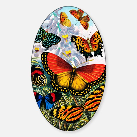 Butterflies, artwork Sticker (Oval)